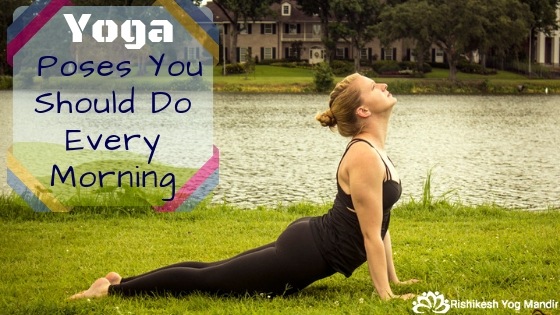 Yoga Poses You Should Do Every Morning