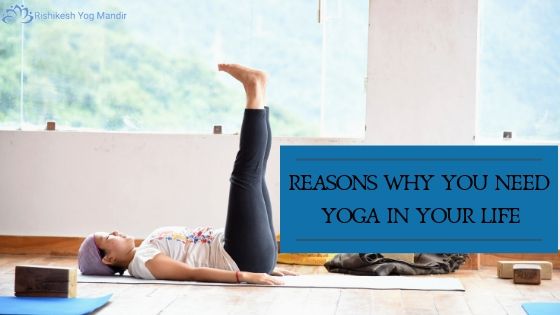Yoga in Your Life