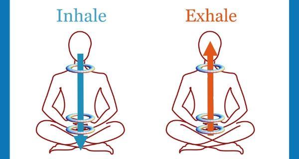 Types of Bandhas in Yoga